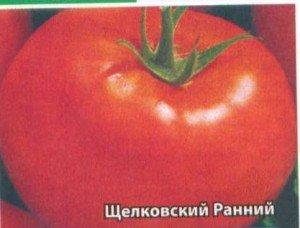 Характеристика томат «Земляк». Отзывы садоводов, фото от тех кто ... | 228x300